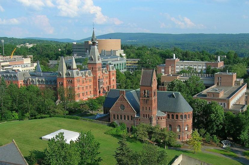 Cornell universitycornell university