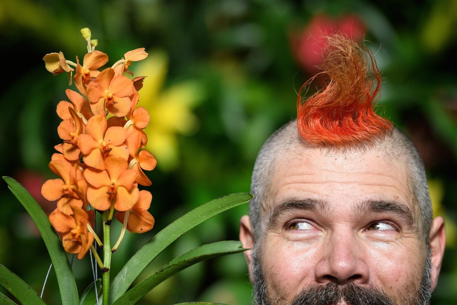 Kew Gardens Thai Orchid Festival 2018