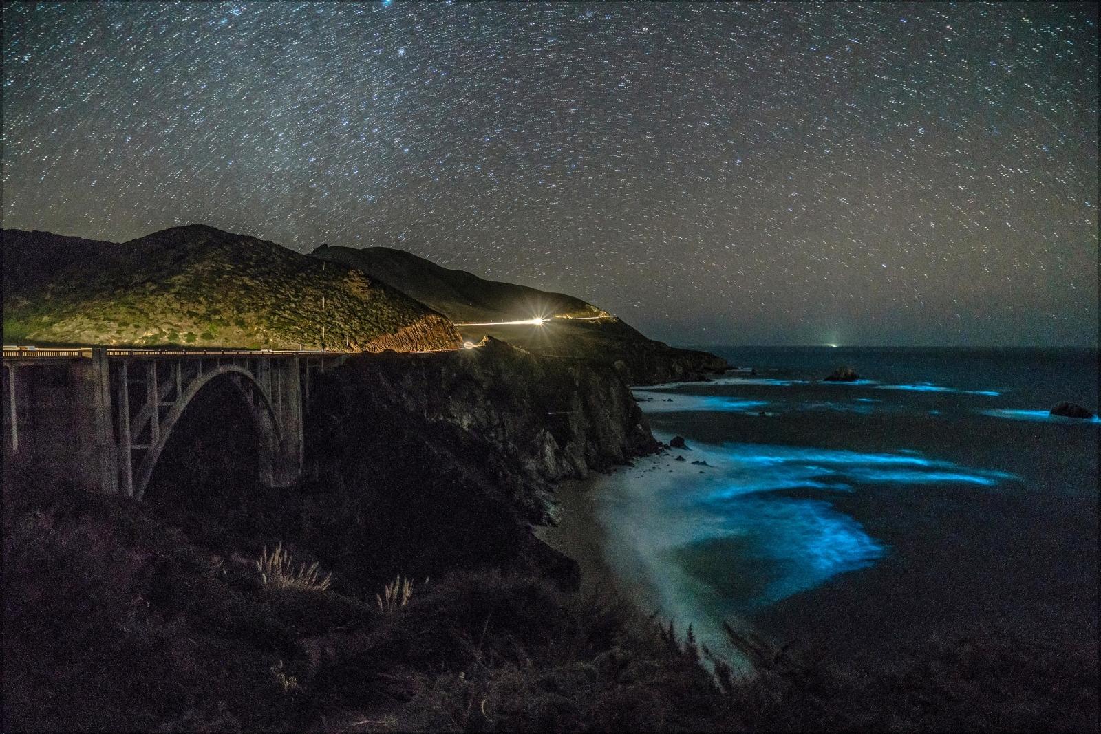 bioluminescent phytoplankton Big Sur California