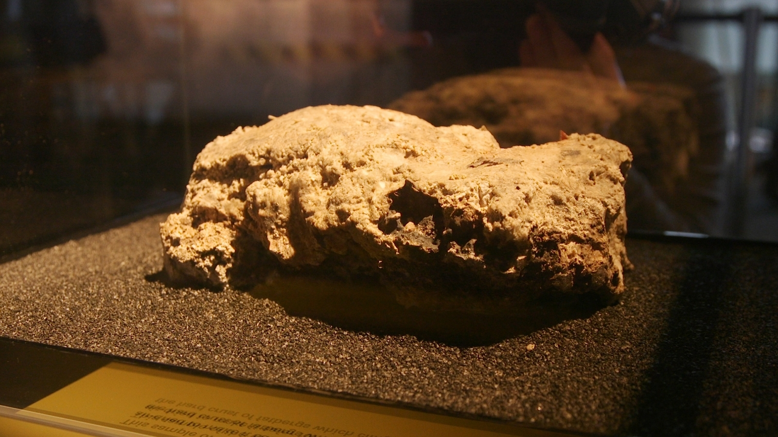 Fatberg in London Museum