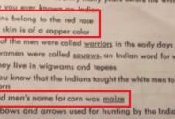 red skin racist homework