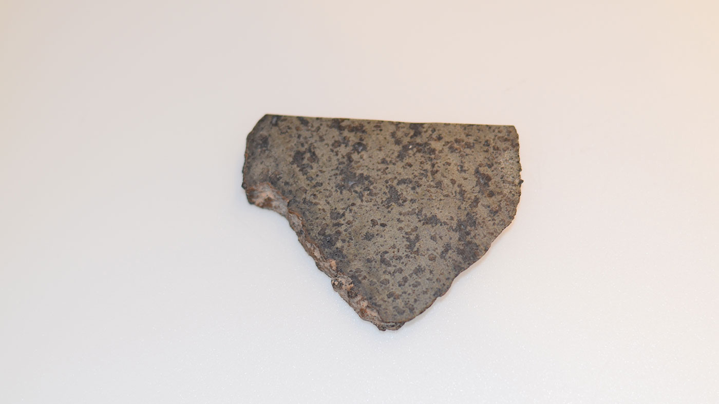 Ancient martian meteorite