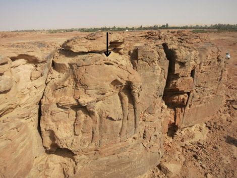 Saudi Arabia rock art