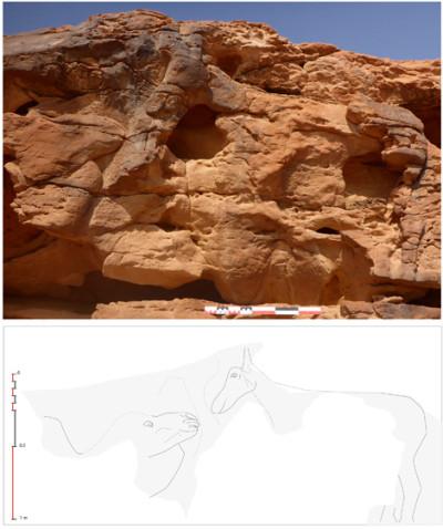 Saudi Arabia rock art