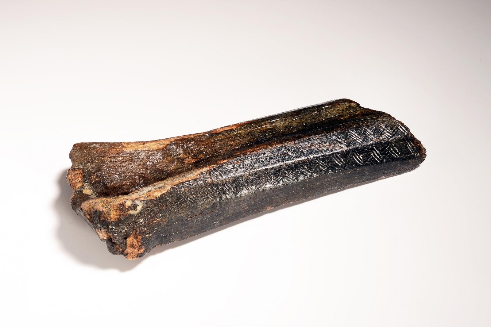 Decorated bison bone north sea ice age