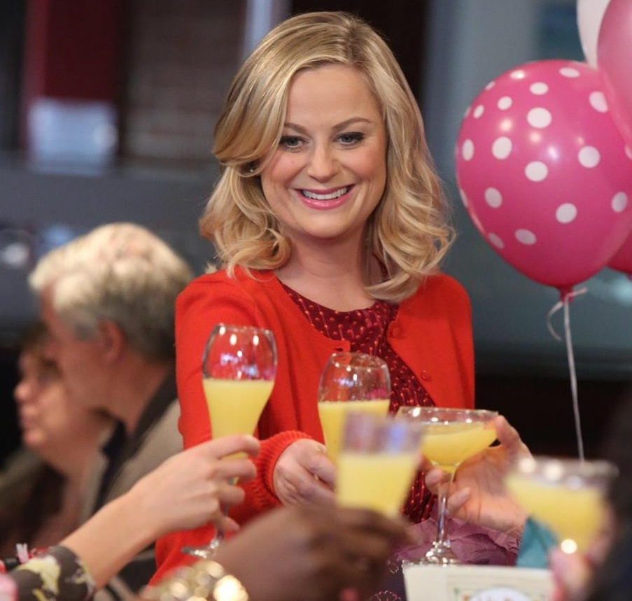 Your best friends, the Parks and Rec ladies, celebrated Galentine's Day