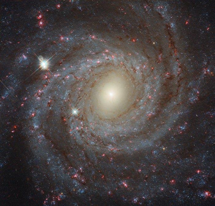 Hubble photo NGC 3344