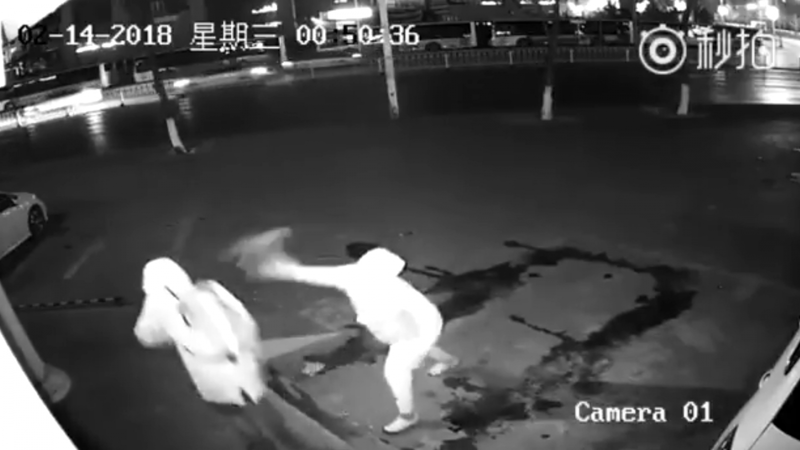 bungling-would-be-shanghai-burglar-hits-partner-in-head-with-brick