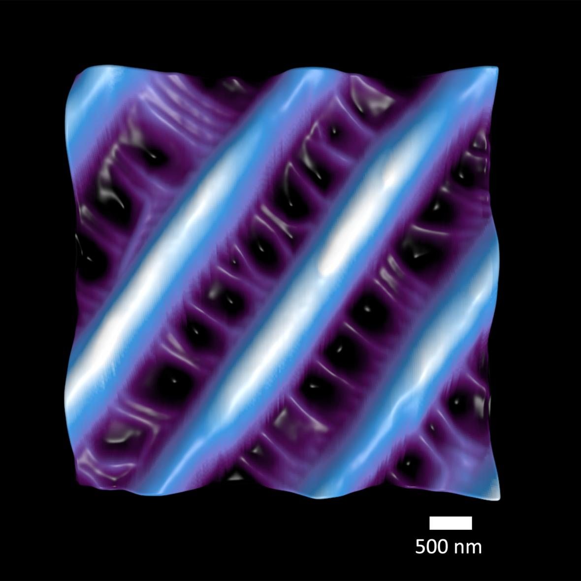 Natures Nanosized Net for Capturing Colour