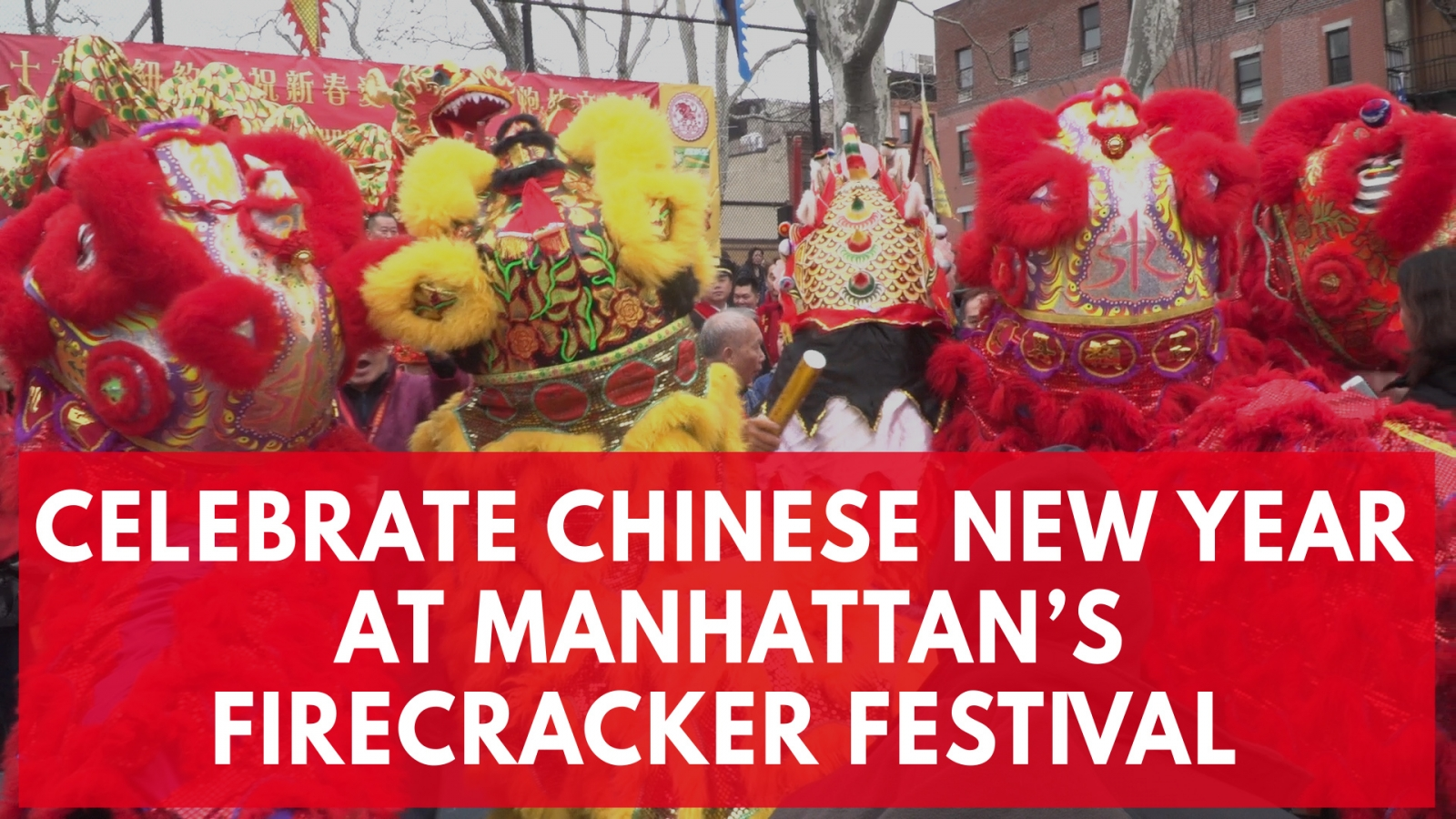 new-yorks-chinatown-celebrates-chinese-new-year-with-firecrackers-and-dancing-dragons