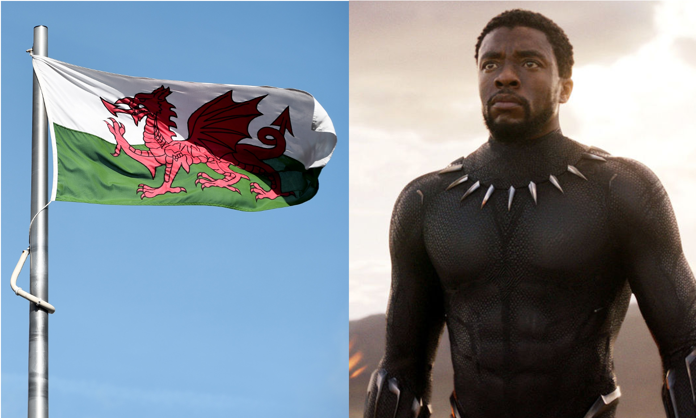 Black Panther Welsh Flag Wales