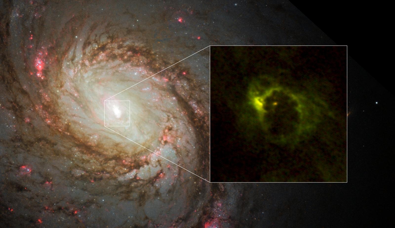 Spiral galaxy M77