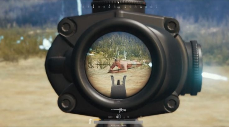 Game Of Pubg Ends In Bizarre Fashion With Nude Pacifist -2705