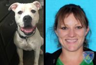 Kelly Folse vet shoots dog