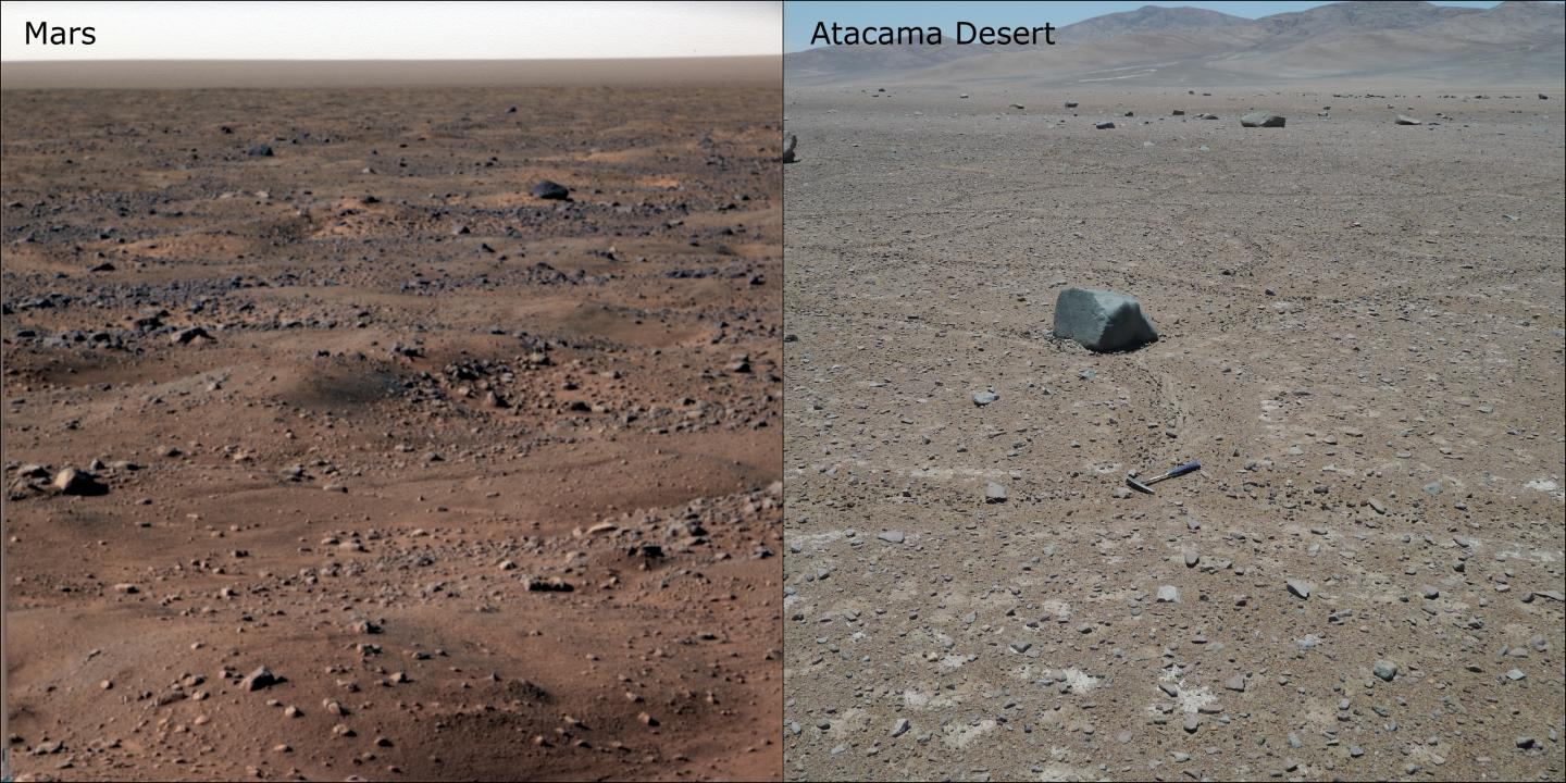 Atacama Desert Microbes Points To Life On Mars