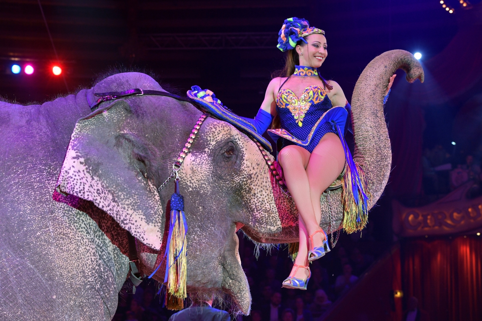 Jana Lacey-Krone performs with an elephant during Circus Krone celebrates premiere of 'In Memoriam' at Circus Krone on December 25, 2017 in Munich, Germany