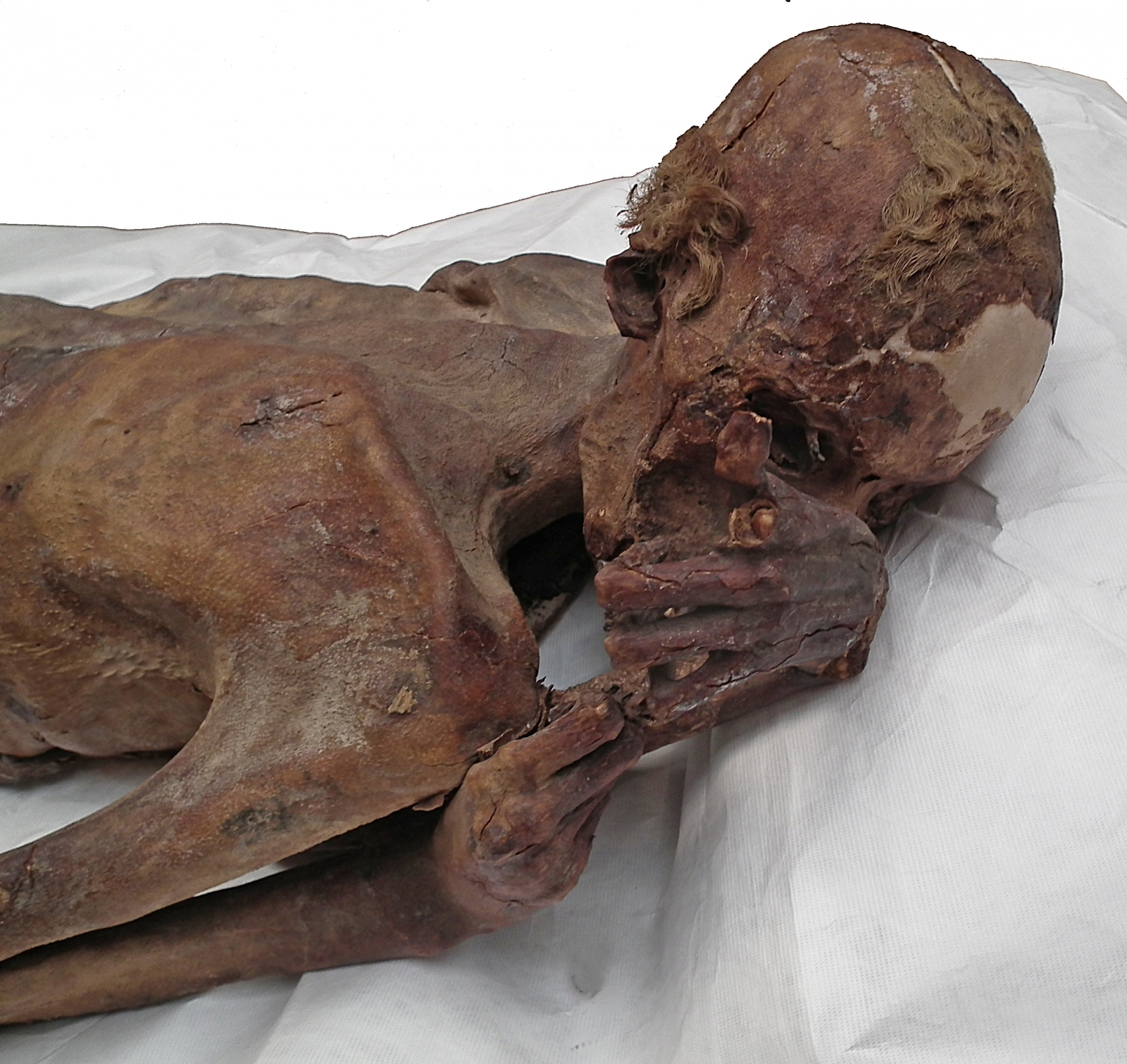 Gebelein male mummy
