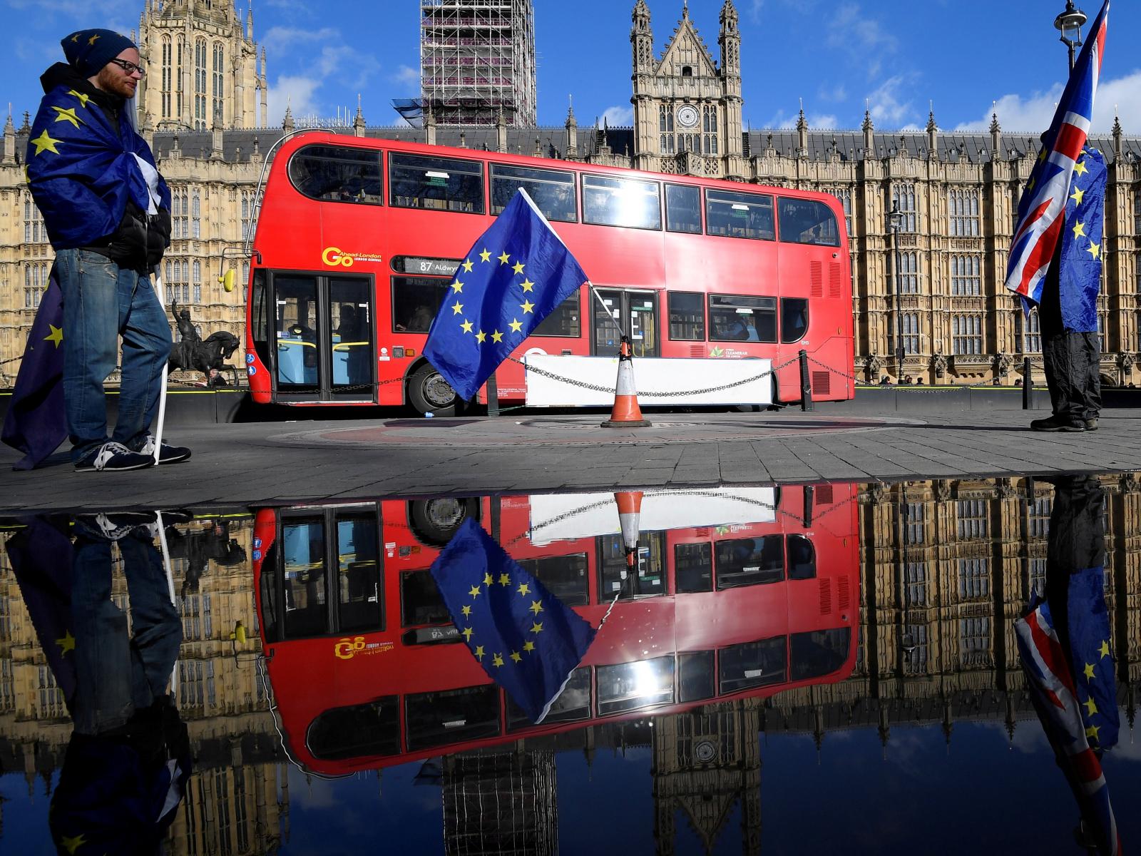Brexit, Houses of Parliament demonstrators