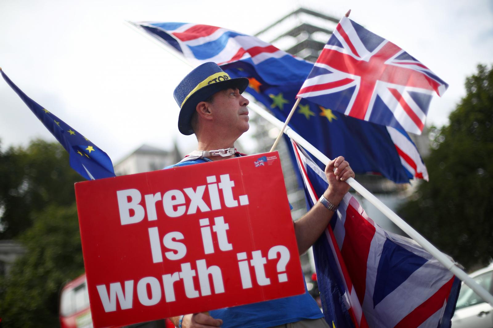Brexit Houses of Parliament demonstrators