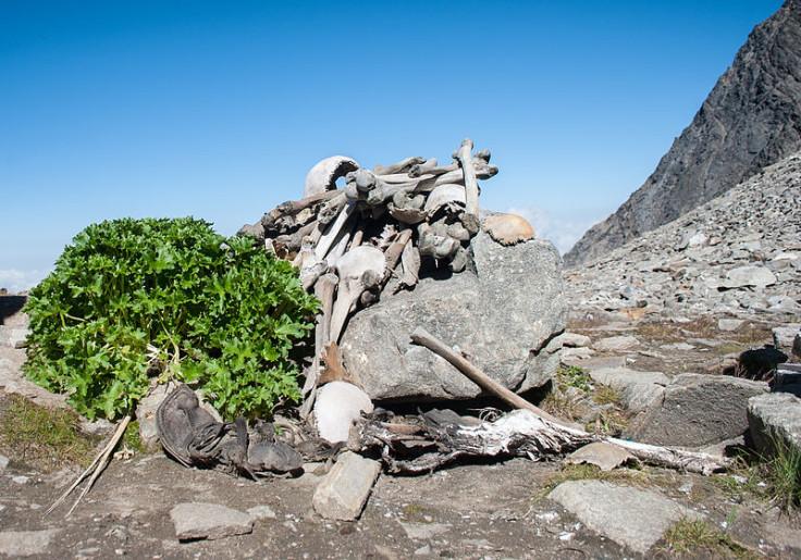 Himalyan 'skeleton lake' DNA testing reveals mysterious results