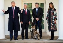 Melania Trump honours hero dog Canon
