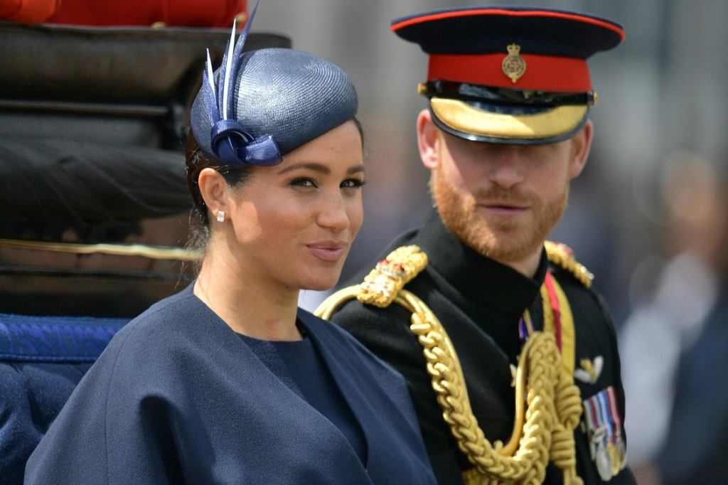 Meghan Markle to visit her private patronages during her visit to London in March