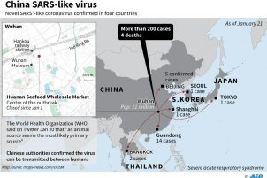 China Sars-like virus