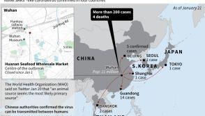 China Sars-like virus