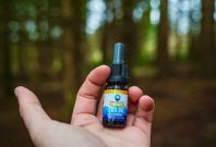 The Top 5 CBD Brands In The UK