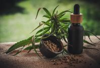 The 5 Best CBD Oils In The UK
