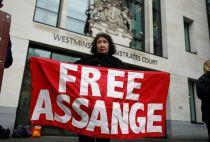 Julian Assange hearing