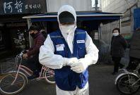Korea COVID-19 cases