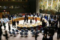 UN Security Council's closed door COVID-19 meeting