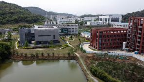 The Wuhan Institute