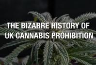 The Bizarre History of UK Cannabis Prohibition