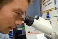 Gene Mutation Inflammatory Disease
