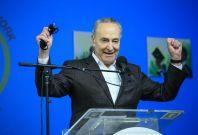 Top Senate Democrat Chuck Schumer