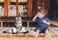 Cat Helps Kids With Autism