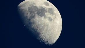 Sperm Bank on the Moon