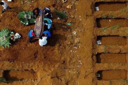Brazil covid deaths