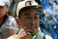 Mexico marijuana use