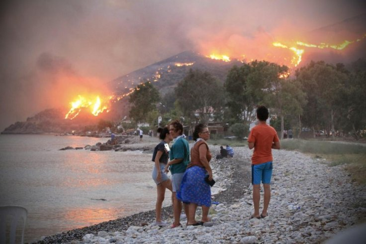 Turkish forest fires