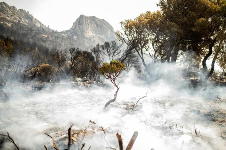 Greek forest fires.