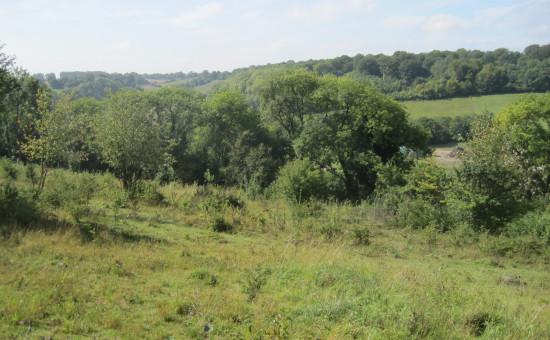 decomposed body found near Saltbox Hill