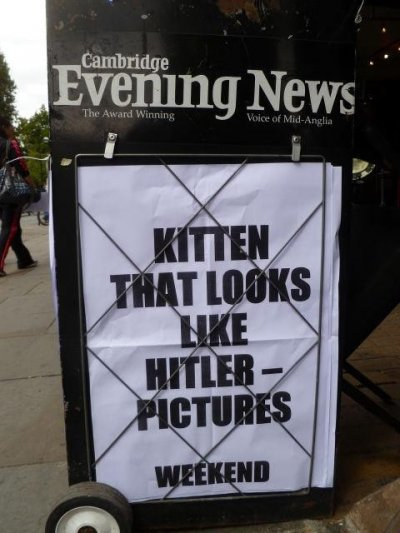 Top 10: The most funny and bizzare local newspaper headlines