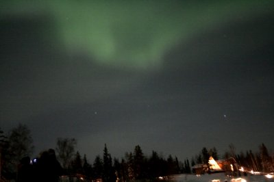 The Aurora Borealis appear in the sky over the woods in Canada039s Northwest Territories of Yellowknife in this picture taken February 14, 2008.