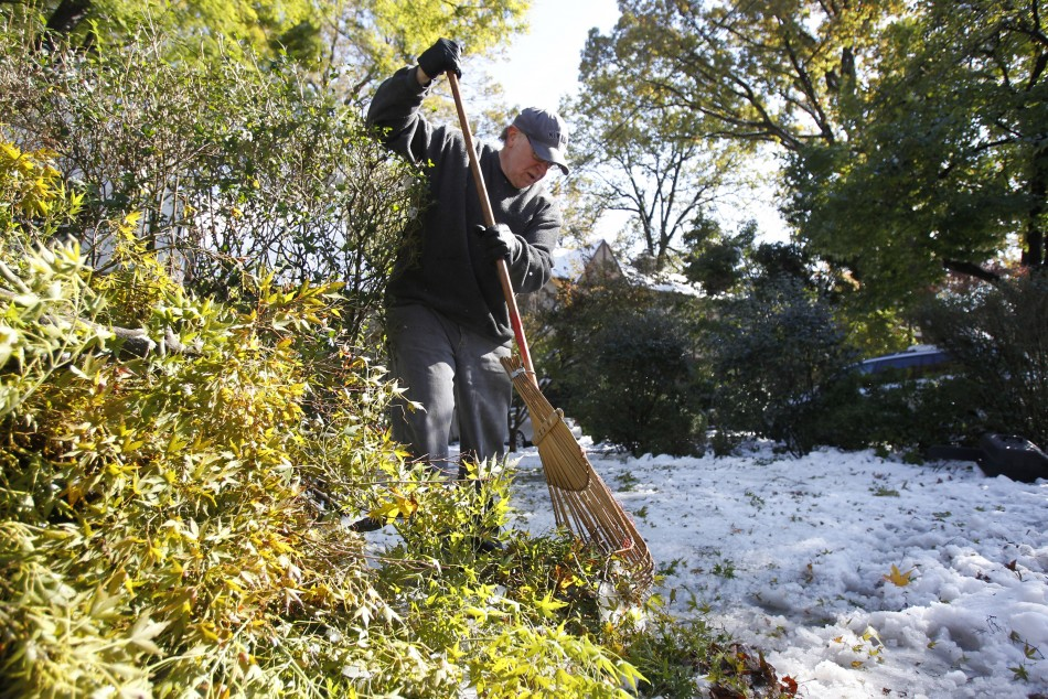 Michael Harfenist uses a rake to clear fallen branches and leaves from the snow covering his driveway in Larchmont