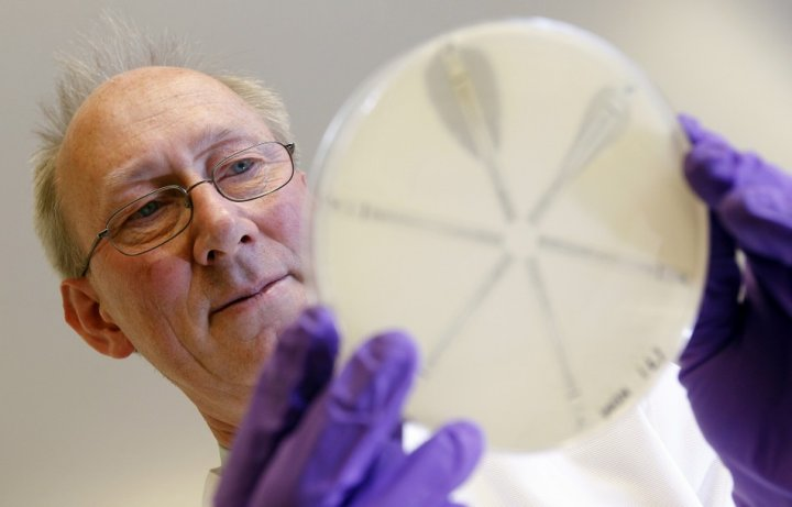 David Livermore from the Antibiotic Resistance Monitoring & Reference Laboratory holds a plate coated with antibiotic-resistant bacteria.