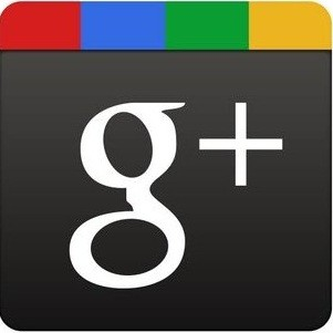 Google's Direct Connect allows users to search the Google+ directory for brand pages.
