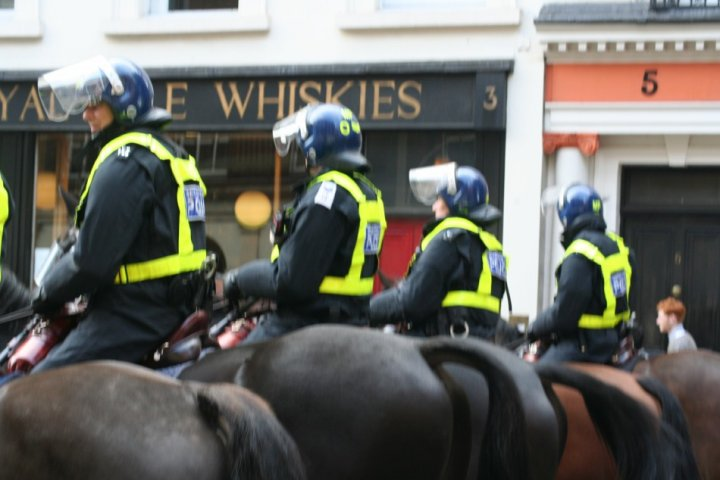 police horses london